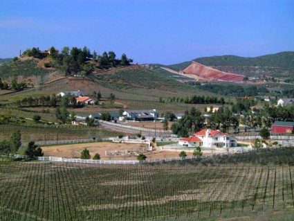 Temecula Wine Country Real Estate