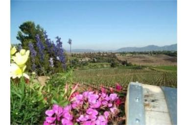 Temecula Real Estate Listings